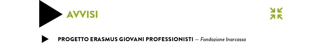 progetto erasmus giovani professionisti — Fondazione Inarcassa