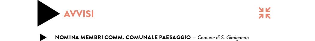 NOMINA MEMBRI COMM. COMUNALE PAESAGGIO