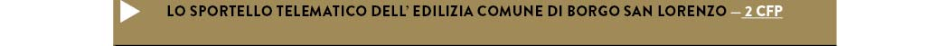 LO SPORTELLO TELEMATICO DELL' EDILIZIA COMUNE DI BORGO SAN LORENZO — 2 CFP