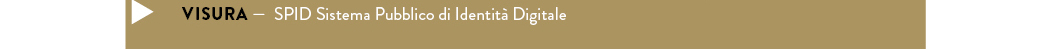 VISURA — SPID Sistema Pubblico di Identità Digitale